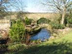 The beck running through the garden - it is home to protected english crayfish