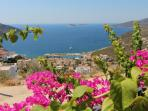 View of Kalkan harbour from the mature gardens