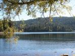 Picnics on Lake Gregory