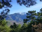 Mount Canigou - as seen from the top of the hill behind La Chataigneraie