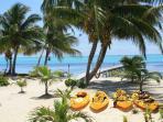 Luxury Beachfront Condominium