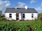 5141 - Portumna, Lough Derg
