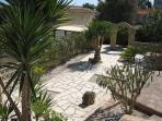 Garden area with lemon tree