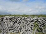 Typical burren field wall