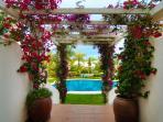Beautiful tropical flowers and vegetation