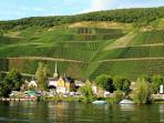 Stunning Graach an Der Mosel and its amazing vineyards