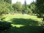 Large back garden (optional use of fruit trees for shade)