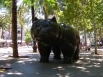 Famous cat in Rambla de Raval