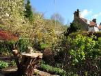 Near the herb garden