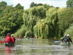 Canoeing and other watersports widely available, just 4 miles from the cottage.