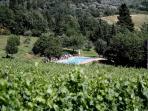 Podere Vignola - Swimming Pool