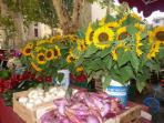visiter les marchés de provence