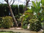 Barranco Garden
