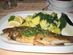Soca trout,local delicacy