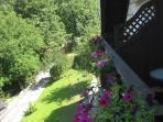 Balcony flowers in summer