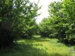 private grove