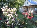 Blomidon Rose Cottages, Kingsport
