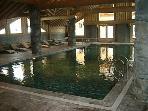 Swimming pool/jacuzzi area