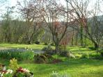 Les Petites Charmilles, the garden in spring