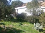 Our 100 mqs garden