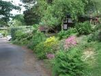 Timber Hill landscaping