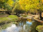 Alojamiento rural Sierra de Jerez entorno área recreativa de montaña