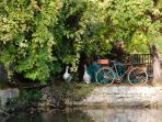 Taken during our last sailing on Canal du Midi