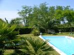 Subtropical pool garden with 100% privacy