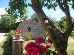 SORTOIANO apartaments in historic Tuscan property
