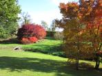 The rear garden in Autumn, perfect fo picnics, sunbathing and hide and seek