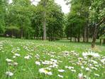 The extensive grounds provide ample space for exploring or simply relaxing under a shady tree