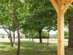 Garden with natural shade