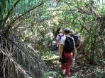 Nature Walk on the Pantanal Ranch Meia Lua
