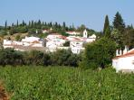 Beautiful village of Paderne with surrouding orange groves and vineyards.
