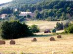 The farmhouse is in a quiet setting, among fields, olive groves and the marvelous Umbrian hills