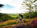 Mountain Biking above Innerleithen (reproduced with kind permission of Forestry Commission)