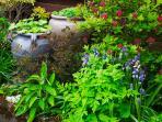 Cosaig's garden