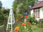 Cottage garden infront of the annex