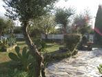 Jardín de 900 mts con barbacoa