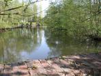 Vue sur l'étang à partir du jardin de la Closerie