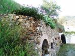 El muro en primavera