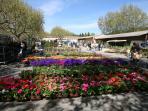 Flower market in Maussane les Alpilles village
