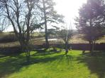 View of Garden & Pond from side of Cottage