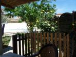 sur la terrasse