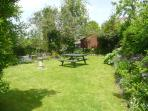Garden with picnic table