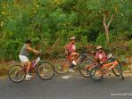 Bicycles are provided free for your family to explore the surroundings