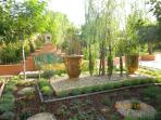 Our garden for you to enjoy from your terrace