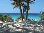 Maria Pia beach - 3,1 km from Iolanda Apartment
