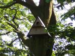 One of our many bird boxes in the grounds at Greetham Retreat. Kestrals have nested in this box