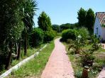 camino hacia la casa - todo verde ;)